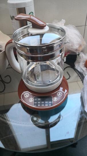 荣事达(Royalstar)养生壶煮茶器电水壶电热水壶烧水壶煮茶壶花茶壶电茶壶煮水壶1.5L玻璃烧水壶YSH1525 晒单图