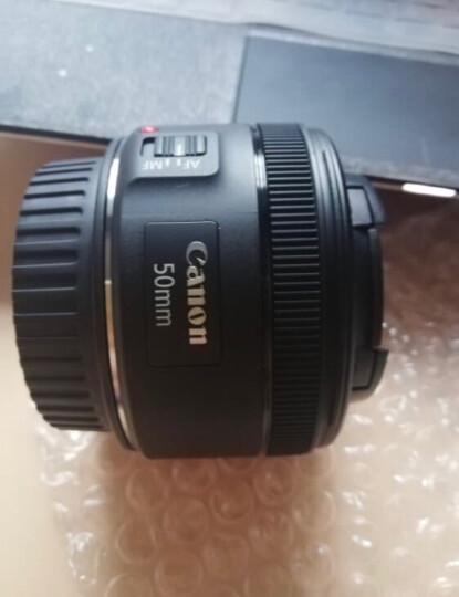 佳能(Canon)EF 50mm f/1.8 STM 单反镜头 标准定焦镜头 晒单图