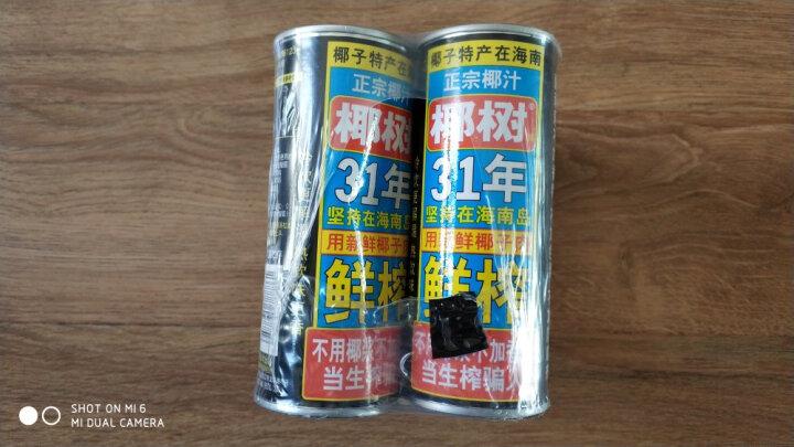 椰树 椰汁正宗椰树牌椰子汁饮料 六连罐245ml*6罐/组 植物蛋白饮料 晒单图