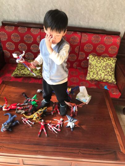 【动漫城】万代(BANDAI)奥特曼模型玩具 大软胶怪兽人偶系列 赛罗艾克斯欧布迪迦奥特曼 大怪兽 持剑迪玛伽 E08708 晒单图