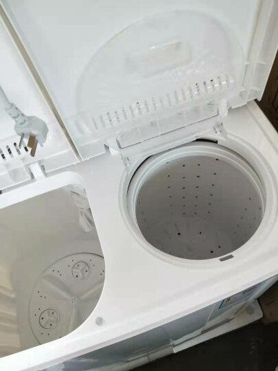 上海(shanghai) 8.0公斤半自动洗衣机 双缸双桶波轮洗衣机大容量 家电 家用小型洗脱两用 XPB80-SH280WDS 8公斤 晒单图