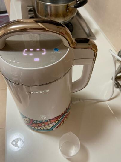 九阳(Joyoung)豆浆机1.1-1.3L破壁机 破壁无渣约时约温全自动家用创新多功能DJ13E-Q11 晒单图