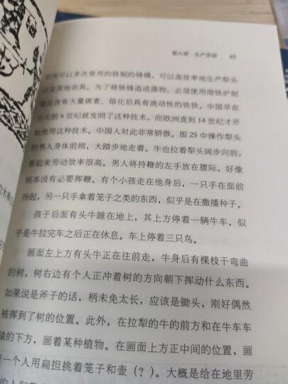 长物:早期现代中国的物质文化与社会状况 晒单图