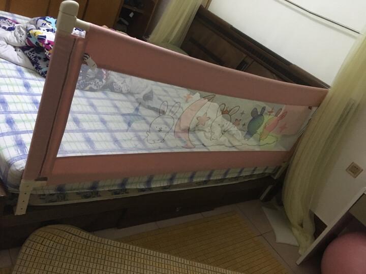 兔贝乐(rabbitbel)宝宝垂直升降防掉床护栏单侧通用创意幼儿落地宿舍学生儿童床围栏挡板床护栏 云朵兔 粉色 92高升降款 1米8 晒单图