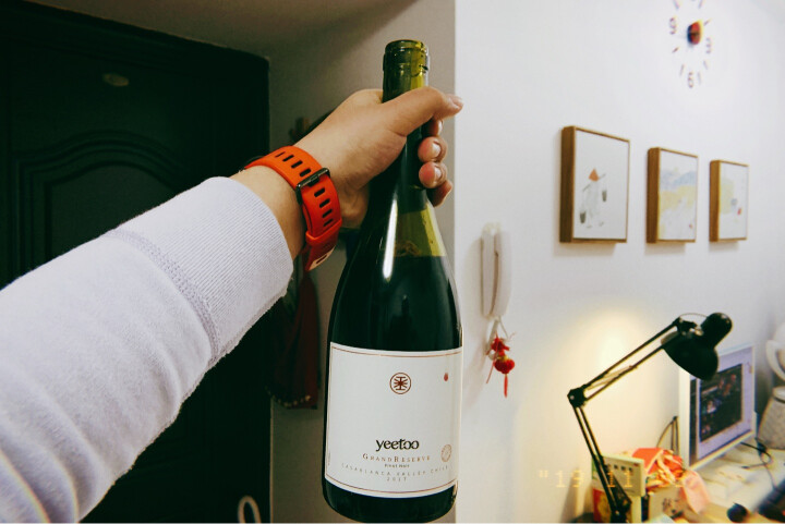 yeetoo芫桐智利原瓶进口干红葡萄酒 grandresrve典藏级黑皮诺红酒 750ml *6皮箱整箱礼盒礼品 晒单图