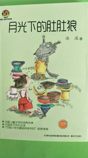 冰波纯美童话系列:月光下的肚肚狼(儿童文学经典版) 晒单图