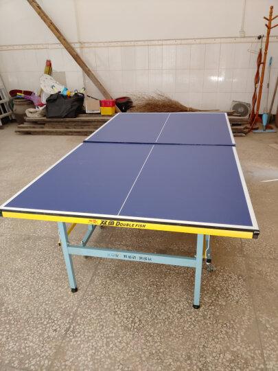 双鱼 少年儿童乒乓球桌 家用迷你乒乓球台 可移动折叠 儿启星E1型 晒单图