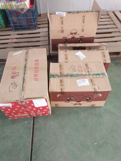 三只松鼠 休闲零食 开口松子218gx2袋 坚果炒货 每日坚果 特产 干果 东北红松子原味 晒单图