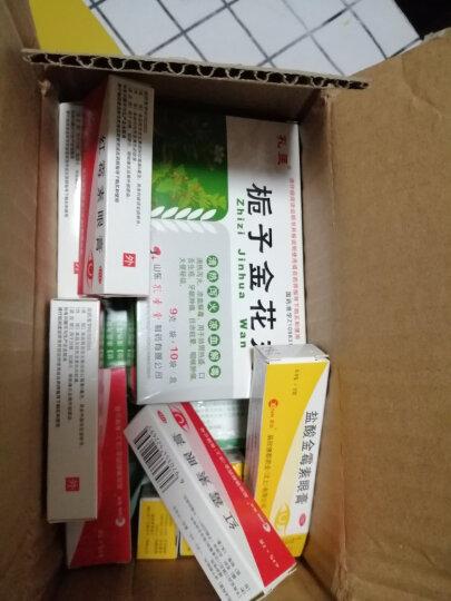辰欣 红霉素眼膏 2g 眼结膜炎角膜炎眼外部感染 红霉素眼药膏 晒单图