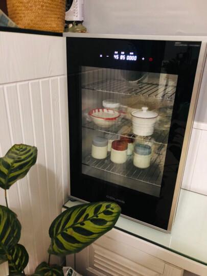 卡士 COUSS CF-6000S发酵箱家用酸奶机商用醒发箱恒温保温箱多功能电烤箱60升大容量 晒单图