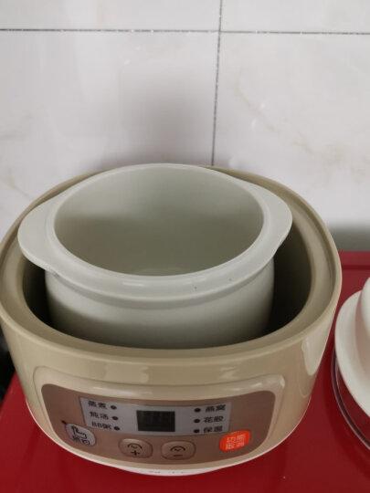 小熊(Bear)电炖锅 电炖盅小容量隔水炖陶瓷燕窝炖盅煮粥锅迷你宝宝辅食bb煲 DDZ-A08D1 晒单图