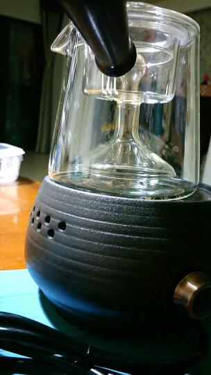 尚言坊全自动煮茶器普洱黑茶白茶专用玻璃壶煮茶炉蒸汽煮茶壶迷你电陶炉家用煮茶炉神器花茶壶 碳陶电陶炉+玻璃黑檀木柄三角蒸煮两用+6杯干泡盘 晒单图