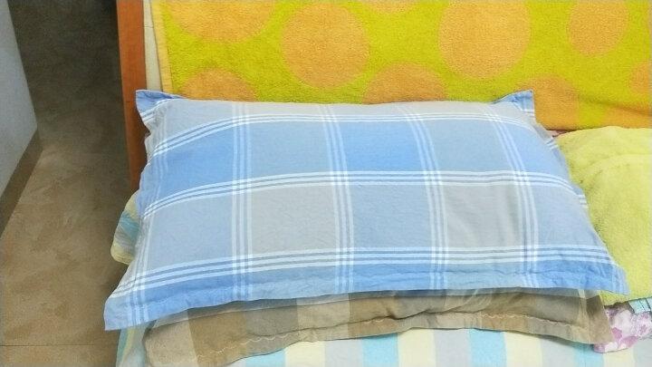 双漫枕芯套枕芯枕皮全白家用涤棉枕芯袋枕芯皮 筒状枕芯套 成人号45x72 晒单图
