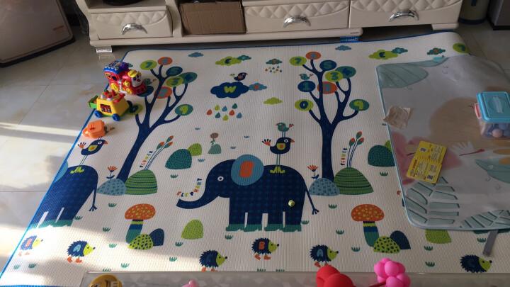 好孩子(gb)宝宝爬行垫婴儿童爬爬垫环保XPE折叠爬行垫加厚爬行毯泡沫地垫儿童爬行垫 双面大象与小鸟+新西兰农庄 晒单图