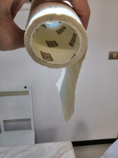 泉林本色 卷纸 不漂白环保健康本色不堵塞空芯卫生纸255节*30卷(整箱销售) 晒单图