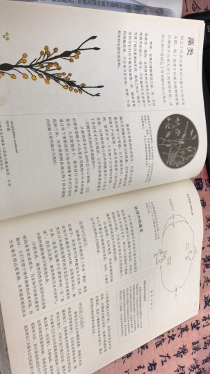 英国皇家园艺学会植物学指南 晒单图