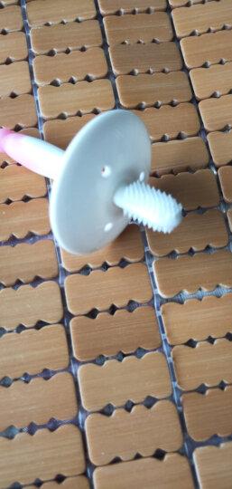 贝亲 (Pigeon) 牙刷 婴儿牙刷 婴儿训练牙刷 柔软刷毛 1阶段训练牙刷 粉色 6-8月 11534 晒单图