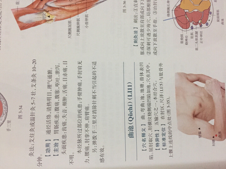 针灸穴位图解(第2版) 晒单图