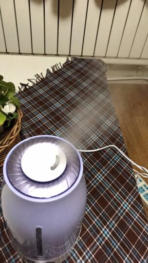小熊(Bear)加湿器 3L 家用大容量 空气净化 办公室静音香薰增湿器JSQ-A30T2 晒单图