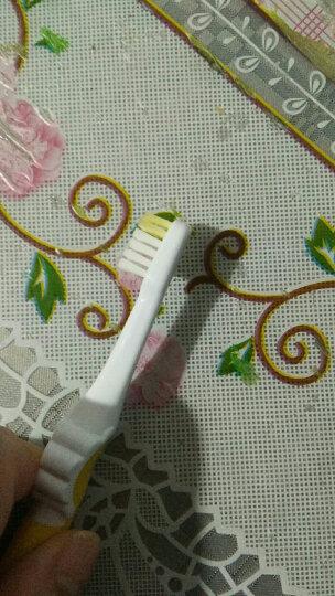 贝亲 (Pigeon) 牙刷 儿童牙刷 儿童训练牙刷 柔软刷毛 4阶段训练牙刷 嫩黄 3-6岁 11805 晒单图