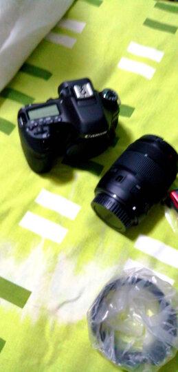 佳能(Canon)EOS 80D 单反相机 单反套机(EF-S 18-135mm f/3.5-5.6 IS USM 单反镜头) 晒单图