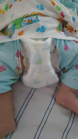 泰迪熊(Teddy Bear)超薄透气  婴儿纸尿裤 M136片【6-11公斤】 晒单图