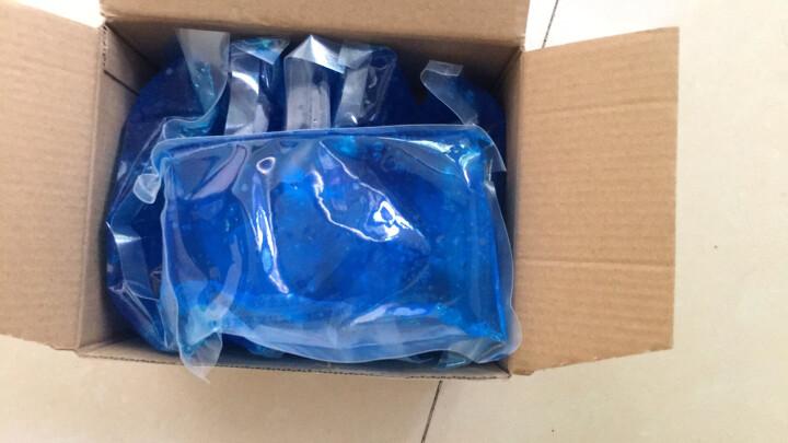 优驰(yooch)保温冷藏用波浪形硬质蓝冰冰盒(2件装)冰包保温箱用保冷保鲜 晒单图