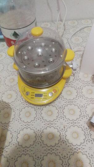 小熊(Bear)煮蛋器 家用早餐机煎蛋器蒸蛋机烙饼机双层多功能微电脑智能预约防干烧 ZDQ-A14T1 晒单图
