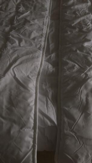 LOVO家纺 春秋被子被芯舒适透气双人四季被 艺享220*240cm 晒单图
