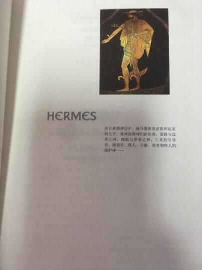 柏拉图的《智术师》:原物与像的戏剧 晒单图
