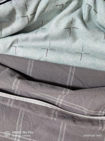 雅鹿·自由自在 被子家纺 棉花被加厚透气保暖秋冬天棉被子 印花绗缝新款 150*200cm 重量4斤 棉花被 一生一世 晒单图