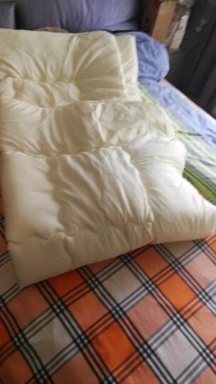 南极人NanJiren 双人秋冬加厚被子 菠萝 200*230cm 6斤 被芯家纺保暖被褥棉被学生被芯盖被春秋被 晒单图
