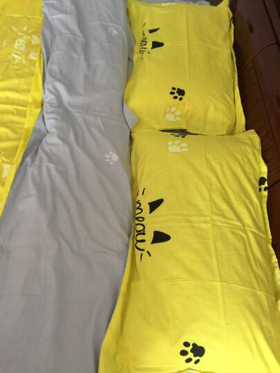 简丽(janlee)床上四件套纯棉 夏季全棉斜纹双人套件床单被单被罩枕套1.5/1.8米床(被套200*230)喵达人 晒单图