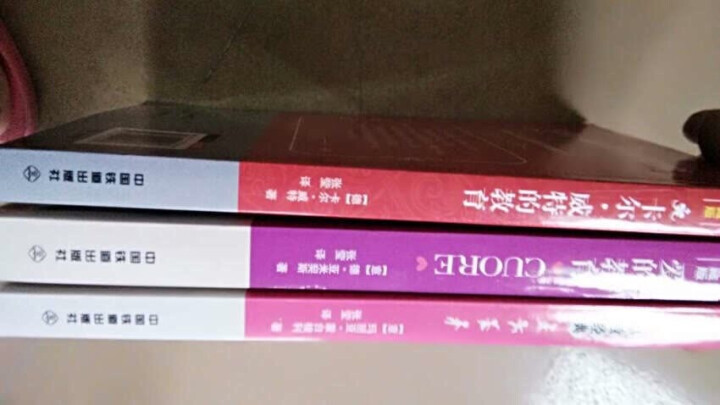 全3册家教书籍套装 蒙台梭利早教经典 爱的教育 卡尔威特的教育 3-15岁儿童素质父母教育孩子的书 晒单图
