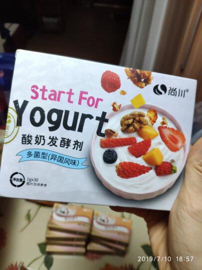 尚川益享型酸奶发酵菌粉 益生菌粉乳酸杆菌酸奶粉 家用自制酸奶发酵剂双歧杆菌种小包10克 晒单图