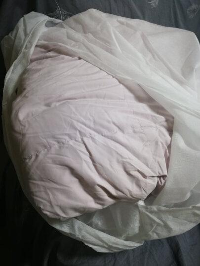 水星家纺 90%鹅绒羽绒被加厚保暖被子 赛尔莎抗菌鹅绒冬被芯 加大单人被子150*210cm 粉紫色 晒单图