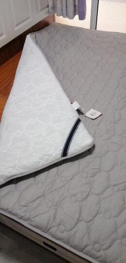 全棉防滑床垫子床褥子加厚软垫单人双人家用榻榻米保护垫1.2米1.5床护垫薄款垫被褥1.8米床褥垫定制 全棉透气防滑抗菌床垫-皓月灰【5.0cm厚款】 宽1.8*长2.0m 晒单图