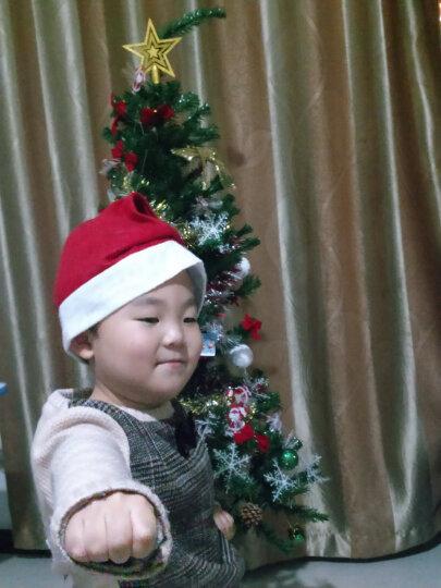 格瑞芬(Gryffon) 装饰品圣诞树套餐节日花环 长帽圣诞礼品礼物 挂袜圣诞鹿彩灯服饰 2.1米豪华套餐(圣诞树栅栏树裙) 晒单图