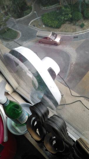 玻妞(HOBOT) (进口直营)波妞擦窗机器人擦玻璃机器人188 智能全自动电动擦窗户玻璃神器工具 188单台 晒单图