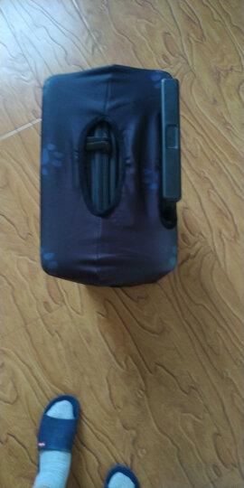 班哲尼 箱套拉杆箱旅行箱保护套弹力行李箱套防尘雨罩加厚耐磨托运套 小柴犬适用箱套26寸27寸28寸29寸拉杆箱 晒单图