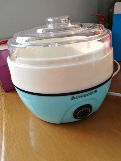 志高(CHIGO)酸奶机家用全自动恒温发酵304不锈钢内胆ZG-L102 配3密封玻璃分杯 晒单图