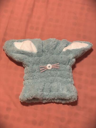 家至宝 超萌兔耳干发帽 出口日本 吸水干发 成人儿童款 超细纤维舒棉绒 大兔耳蓝色 JC-609 B 晒单图