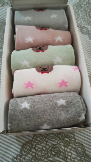 南极人袜子女舒适可爱中筒袜清新时尚透气女棉袜5双礼盒装 小猫款 休闲中筒袜 晒单图