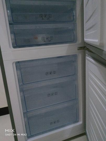 美菱(MELING)271升 三门冰箱风冷无霜 智能双变频一级能效 宽幅变温家用电冰箱 雅典娜BCD-271WP3CX 晒单图