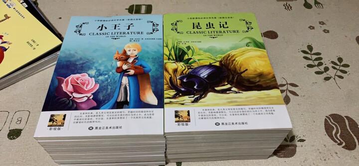 一二年级课外书小学生阅读书籍三20册彩图注音版儿童读物必读文学世界名著7-10岁图书海底两万里小王子 晒单图