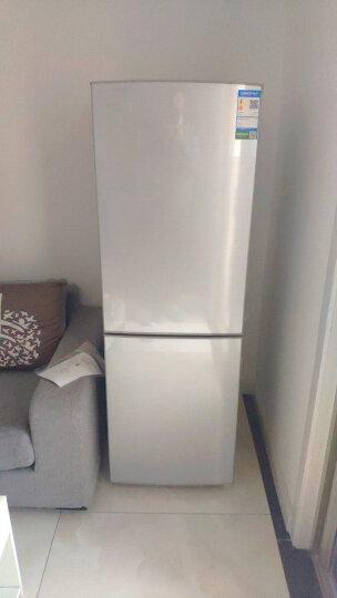 容声(Ronshen) 186升 双门两门电冰箱 节能静音 自感应温度补偿 小型经济实用 BCD-186D11D 晒单图