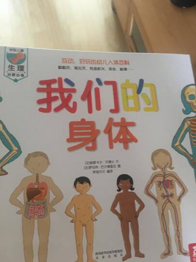 3-6岁英汉双语绘本:鳄鱼宝宝卡特和小兔子菲比(套装共8册) 晒单图