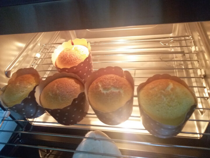 凯度(CASDON) 蒸烤箱家用台式电蒸箱 电蒸炉蒸烤二合一取代微波炉烤箱一体机蒸汽炉 E6 晒单图