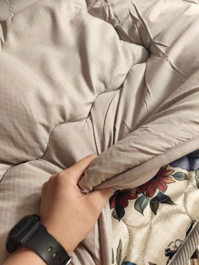 艾维(I-WILL) 床品家纺床垫床褥子 竹炭床垫子垫被榻榻米 加大双人 180*200cm 晒单图