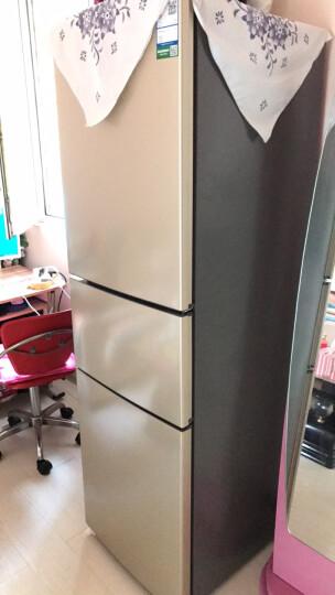 容声(Ronshen) 221升 小型风冷无霜三门电冰箱 电脑中控 宽幅变温 静音节能 璀璨金 BCD-221WD12NY 晒单图